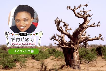 【突撃、世界ごはん!】ナイジェリアと日本の男女の違い