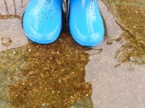ディズニーランド&シーが雨の時の楽しみ方や対策!