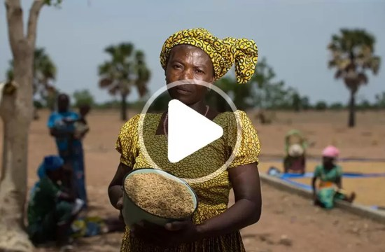 VIDEO: RICE BOOSTS INCOME