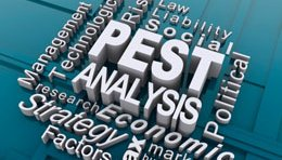 Biz Strategy 101: How to do a PEST Analysis