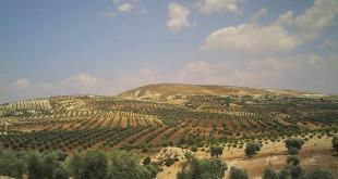 الريف السوري