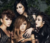 Eight Years of Music, Four Brown Eyed Girls, and One Nega Network