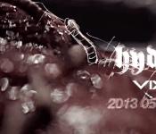 VIXX Returns with Hyde