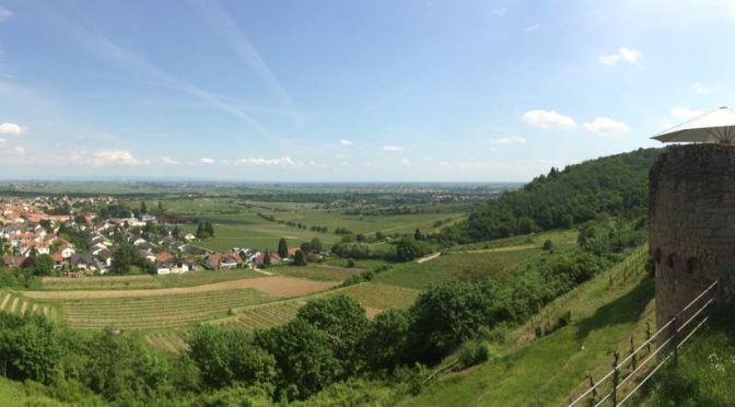 Rundwanderung auf dem Weinsteig zur Wachtenburg