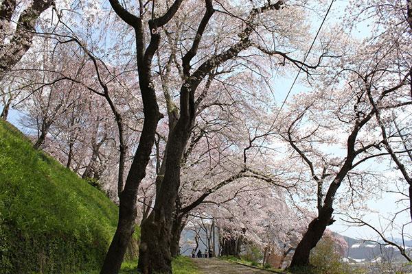 04_A烏帽子山公園