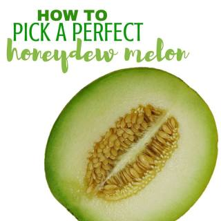 How to Pick a Honeydew Melon