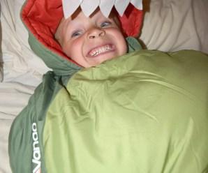 Dragon Sleeping Bag Review