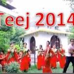 Teej 2014 song – Macho Macho Vyaguto