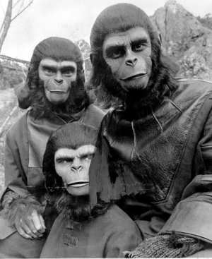 The only ape people we recognize are British and smell like cigarettes and Charlton Heston.