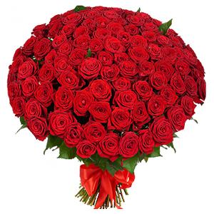 buchet-din-101-de-trandafiri-rosii-1yBt9
