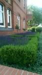 Gartengestaltung - Service in Grün - Webergarten