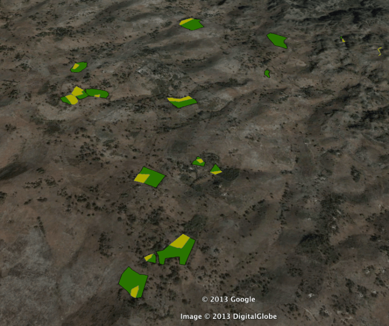 Parcels of Participant families are shown in green, the portion of their land that they indicated they would like to dedicate to growing coffee is shown in yellow.