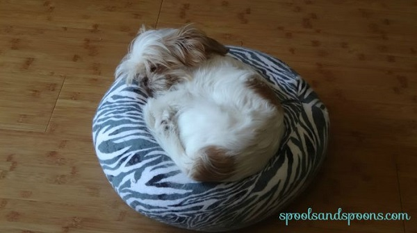 "Tutorial: Beanbag cushion for a small pet or 18"" doll"