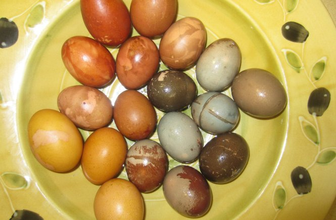 Naturally Dyed Easter Eggs, Sew Pomona