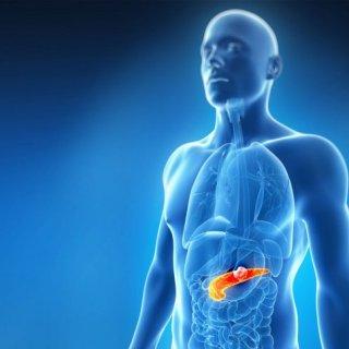 pancreasul unde este situat