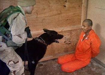 Guantanamo prisoner threatened by dog