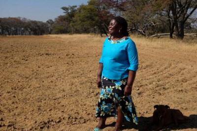 A happy farmer, Tracy Mutinhiri stands outside her tobacco farm near Harare, Zimbabwe. – Photo: Kevin Sieff, Washington Post