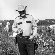 Prison slavery field lieutenant with prisoners picking cotton Cummins Prison Farm, Texas 1975 cy Marshall Project, cropped