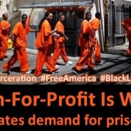 'Prison-for-Profit Is Wrong' meme