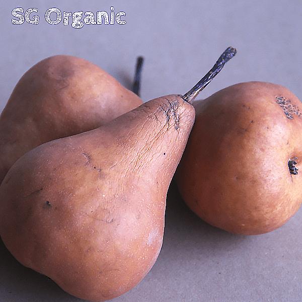 SG Organic bosc pear