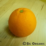 navel_orange-ea_sgo