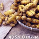 Strong antioxidant organic turmeric
