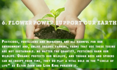 Why eat organic - point 6: Better for the environment
