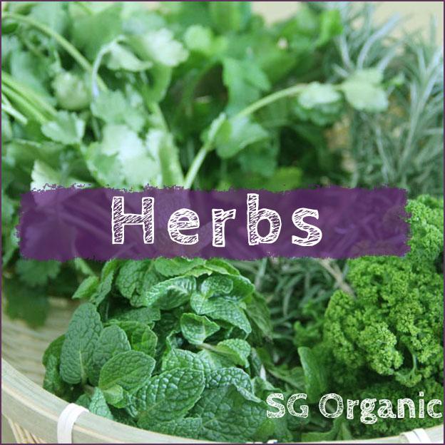 Herbs <span class='count'>(12)</span>