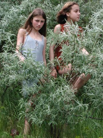 lulu hutt ru astral nymph photo sexy girls