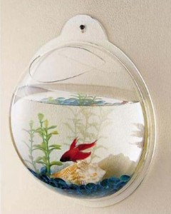 wall-mount-fish-aquarium2