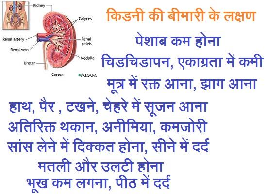 Kidney bimari ke lakshan kya hai