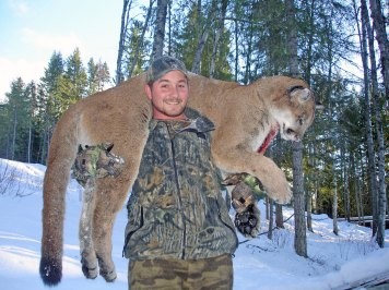 cat-trophies-t-4.33.46-PM25
