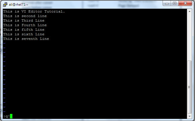VI_Editor_10