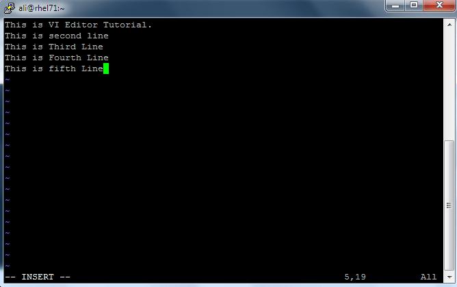 VI_Editor_4