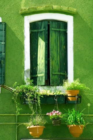 green window and wall