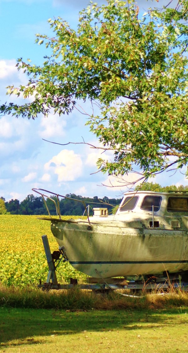 A boat and soybean field on  Eastern Shore farmland on Shalavee.com