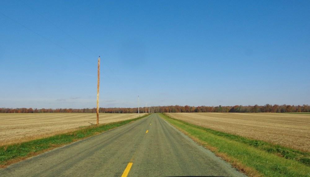 long and winding road on Shalavee.com