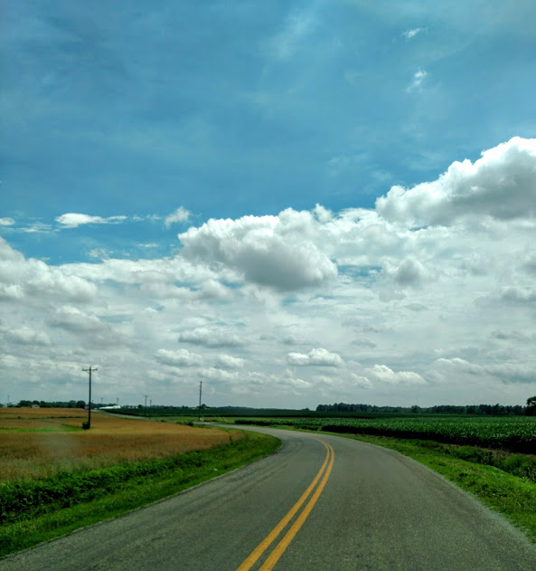sky over corn fields