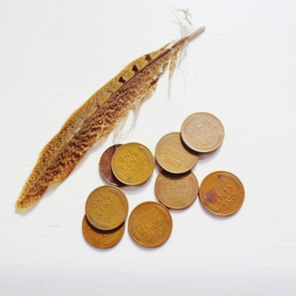 Wheat pennies on Shalavee.com