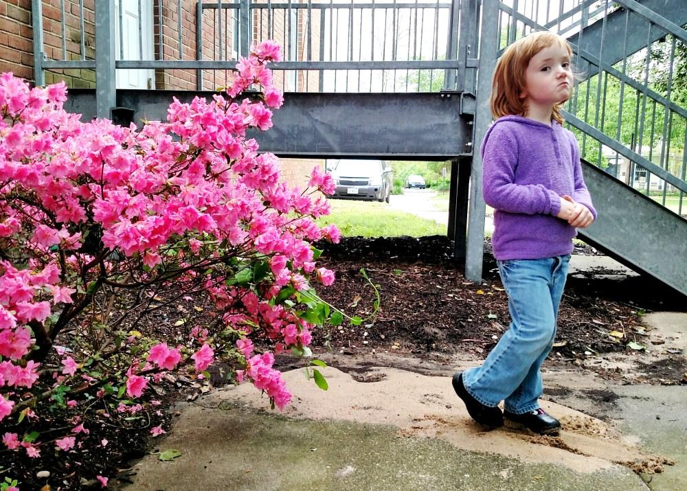 Fiona and the azalea on shalavee.com