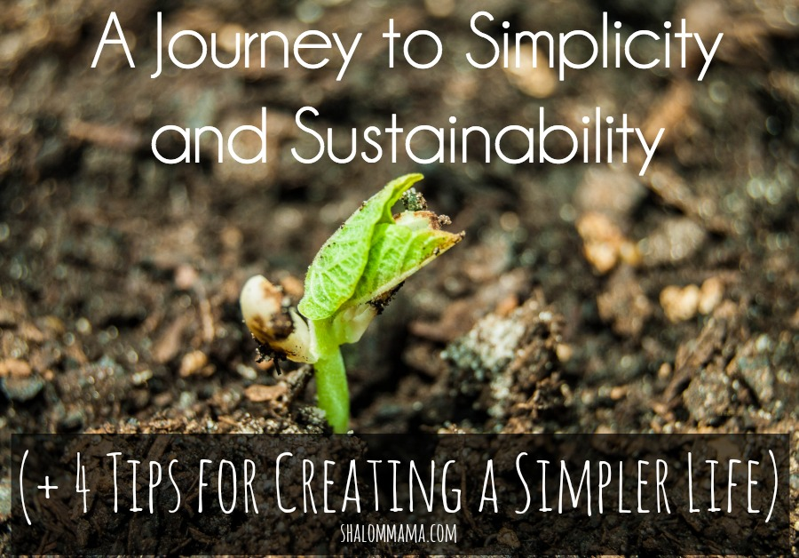 A Journey to Simplicity and Sustainability (+ 4 Tips for Creating a Simpler Life)
