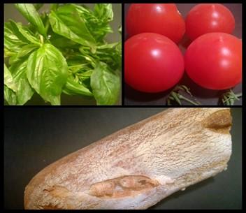 Basil, Tomatoes, Bread
