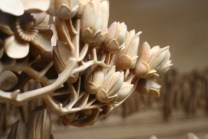 """At each level in the tower were large elaborate panoramas carved out of wood. this closeup shows the detail that went into the level of carving. Each of these flower buds is only 1/4"""" in length.."""