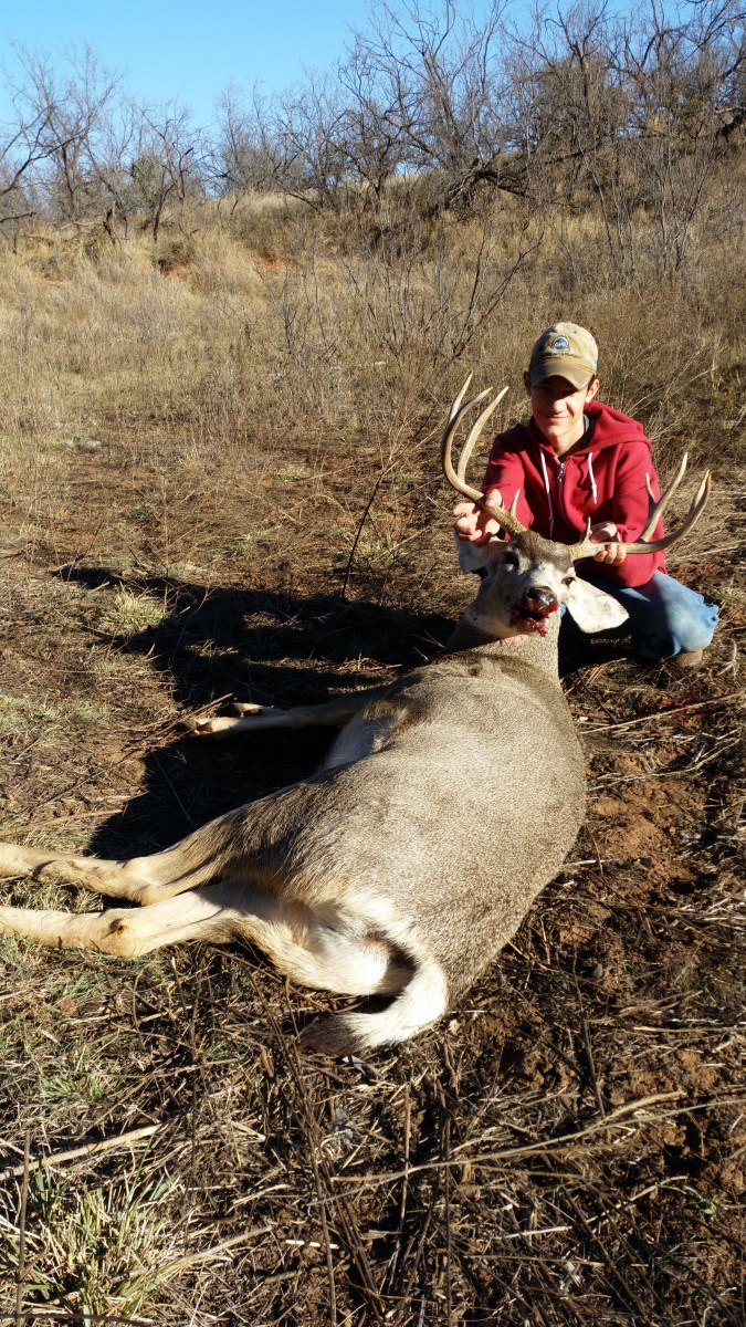 Stockton's Buck