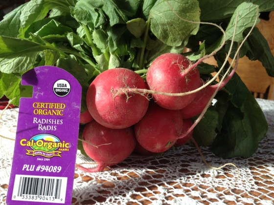 One bunch of organic radishes