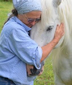 sharon horse