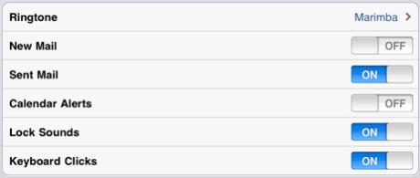 iPad Sound Options in iOS 4.3