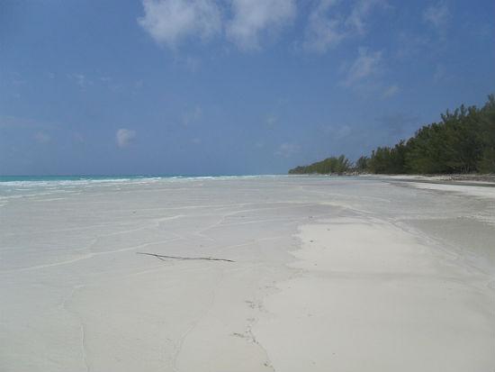 BPO 2013 Gold Rock Beach Grand Bahama The Bahamas