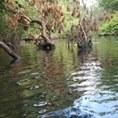 Sandy Pond, Billerica