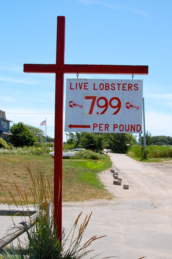 rhode island lobsters